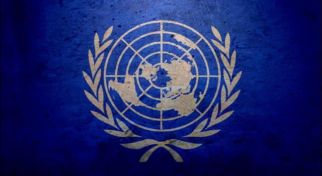 Gesellschaft Wissensfrage: Welchen Jahrestag feierten die Vereinten Nationen im Jahr 2015?