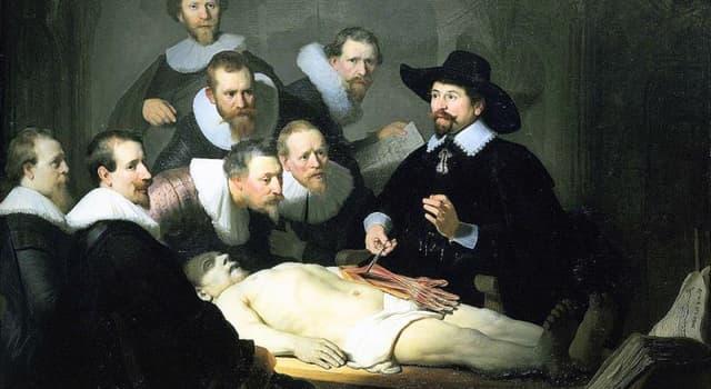 """Kultur Wissensfrage: Welcher berühmte niederländische Künstler malte das Gemälde """"Die Anatomie des Dr. Tulp""""?"""