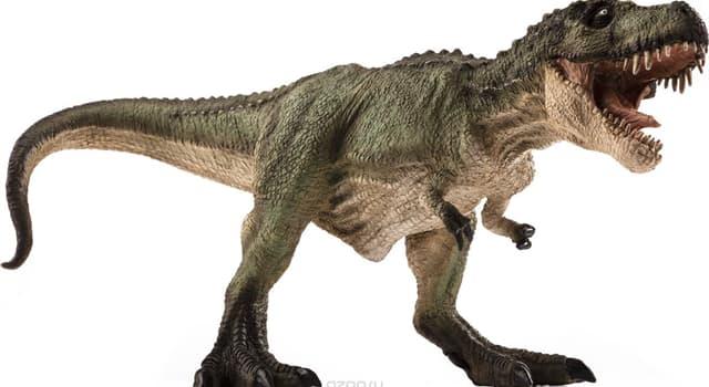 Natur Wissensfrage: Welcher Dinosaurier ist auf dem Foto dargestellt?