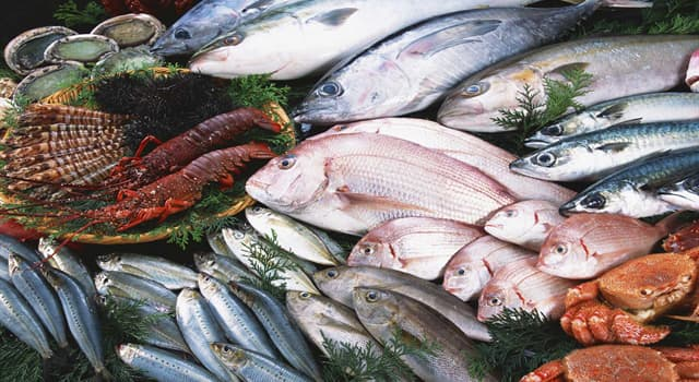 Gesellschaft Wissensfrage: Welches ist eine Marke von Fischprodukten aus der Dose?