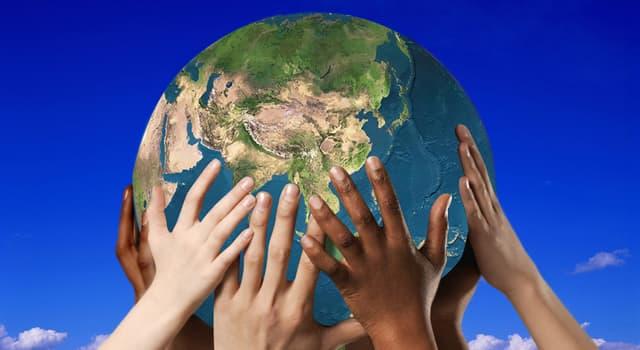 Natur Wissensfrage: Welches Tier ist auf dem Logo des WWF (World Wide Fund For Nature) dargestellt?
