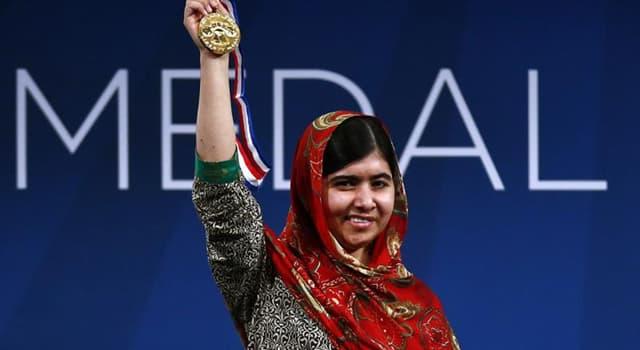 Gesellschaft Wissensfrage: Wem wurde den Friedensnobelpreis 2013 verliehen?