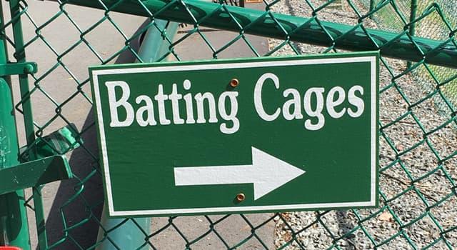Sport Wissensfrage: Wer hat den Batting Cage erfunden, der heute für Baseball- und Softballübungen verwendet wird?