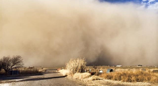 History Trivia Question: What caused the Dust Bowl of the Great Depression?