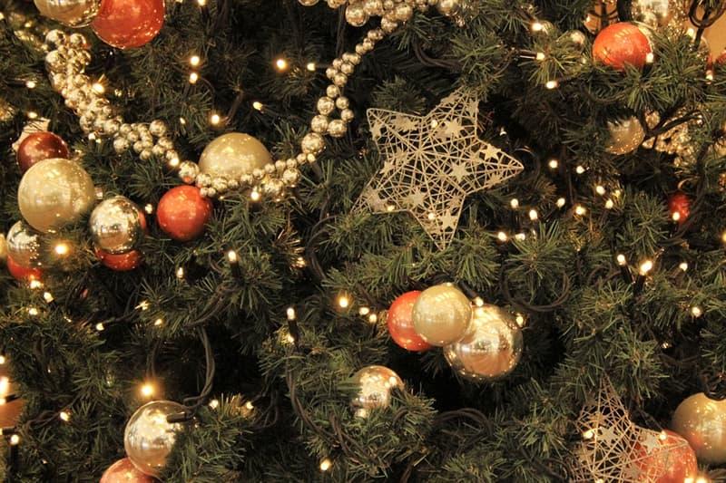 Kultur Wissensfrage: Aus welchem Land stammt der moderne Weihnachtsbaum?