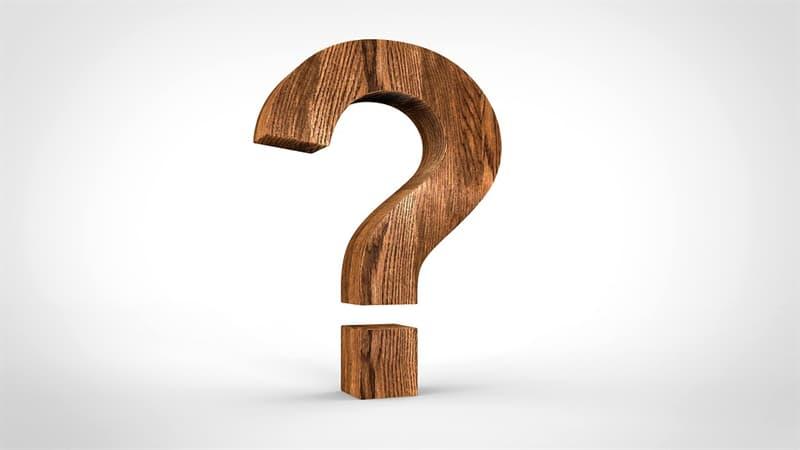 natura Pytanie-Ciekawostka: Co to puklerzniczek?