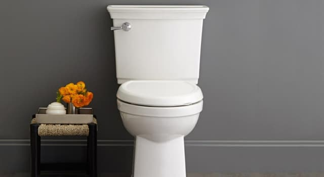 Society Trivia Question: When referring to a toilet, what do the letters WC stand for?