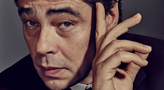 Movies & TV Trivia Question: Which film features both Johnny Depp and Benicio Del Toro?
