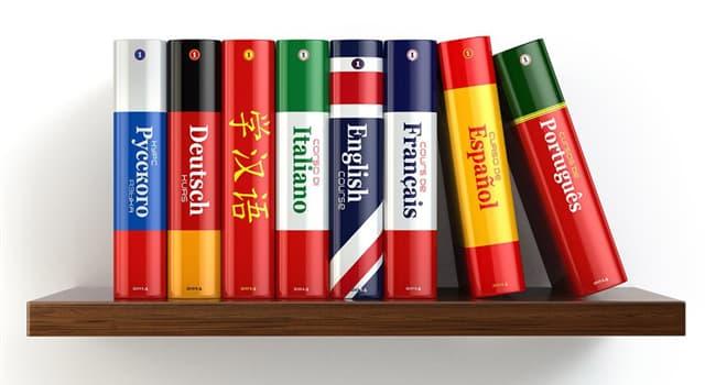 Wissenschaft Wissensfrage: Wie lautet eine andere Bezeichnung für Zweisprachigkeit?