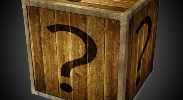 Wissenschaft Wissensfrage: Wofür wurde die Enigma-Maschine verwendet?