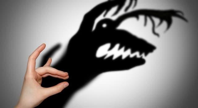 Gesellschaft Wissensfrage: Achluophobie ist die Angst vor ...