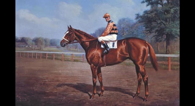 Sport Trivia Question: As of 2019, how many horses have won the American Triple Crown?
