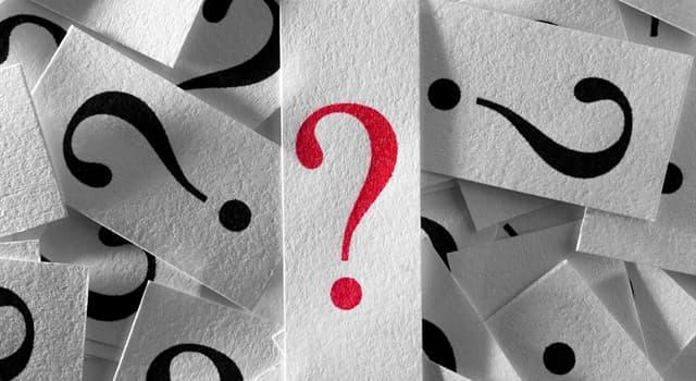 społeczeństwo Pytanie-Ciekawostka: Czym/ kim są rączycowate?
