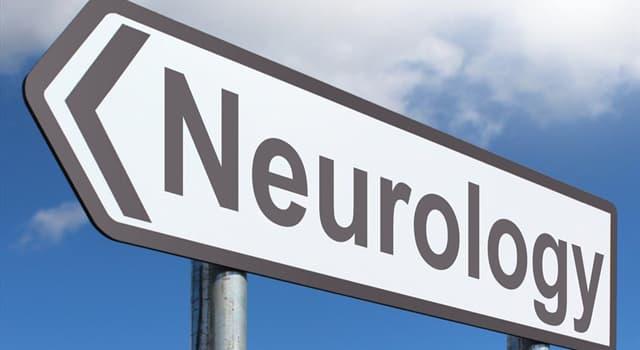 Wissenschaft Wissensfrage: Die Neurologie ist das Studium von was?
