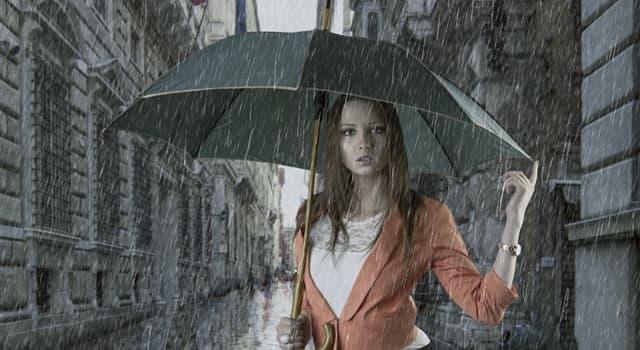 Суспільство Запитання-цікавинка: Для чого спочатку призначалися парасолі?