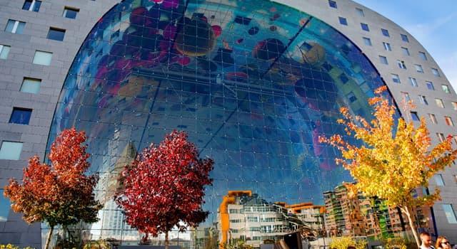 Географія Запитання-цікавинка: Де знаходиться місто Роттердам?