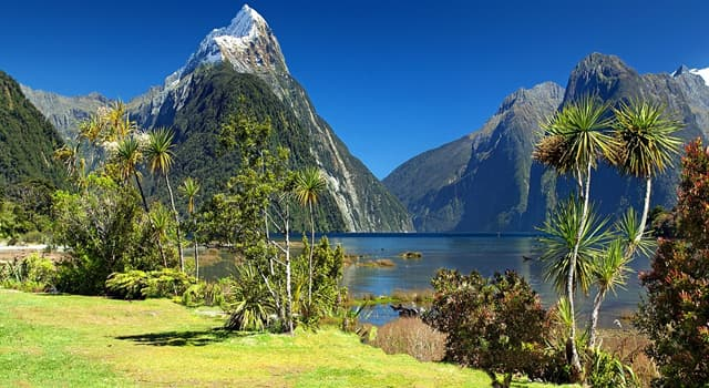 Geography Trivia Question: How many stars are there on the flag of New Zealand?