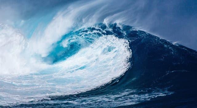 natura Pytanie-Ciekawostka: Jak nazywa się fala oceaniczna wywołana podwodnym trzęsieniem ziemi?