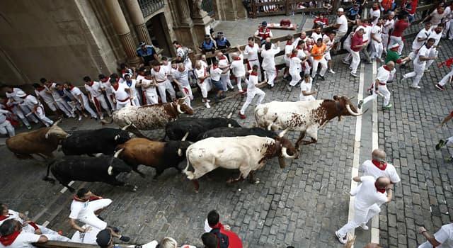 Культура Запитання-цікавинка: Як називається іспанський національний звичай - втікання від випущених із загороди биків?