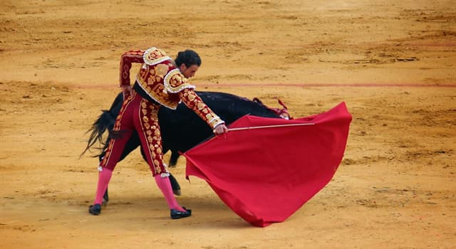 Культура Запитання-цікавинка: Як називається найбільш поширена форма бою биків?