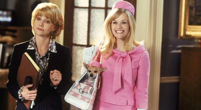 Фільми та серіали Запитання-цікавинка: Як звуть актрису, яка зіграла головну роль в комедії «Блондинка в законі»?