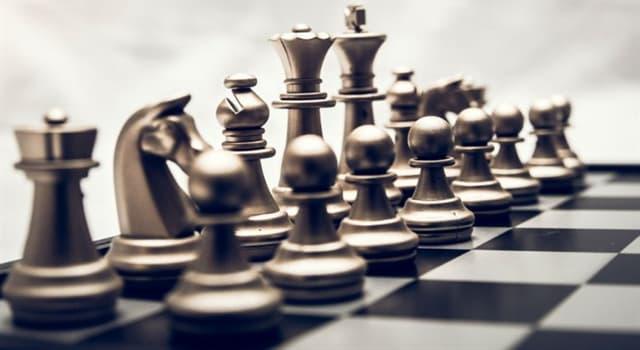 Культура Запитання-цікавинка: Яка шахова фігура не може рухатися по прямій лінії?