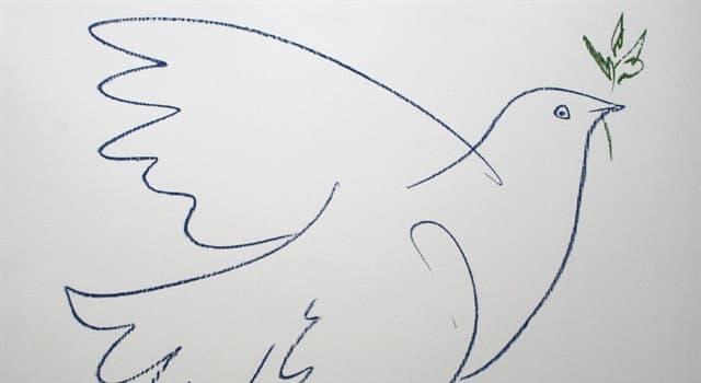Культура Запитання-цікавинка: Який художник намалював голуба миру?