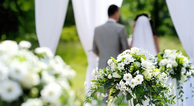 Культура Запитання-цікавинка: Який марш є одним з найбільш поширених в світі весільних маршів?