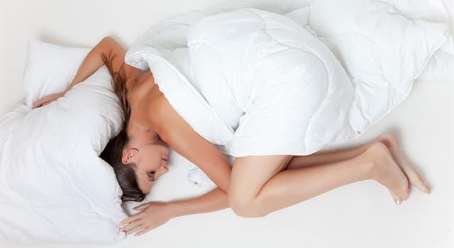 natura Pytanie-Ciekawostka: Który owad jest odpowiedzialny za rozprzestrzenianie się śpiączki afrykańskiej?