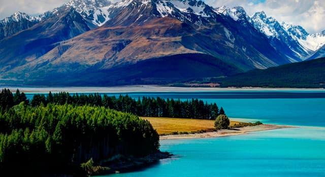 Kultura Pytanie-Ciekawostka: Który ptak jest symbolem Nowej Zelandii?