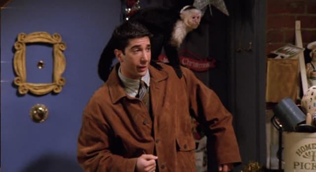 """Filmy Pytanie-Ciekawostka: W programie telewizyjnym """"Friends"""", jak nazywała się małpka Rossa?"""