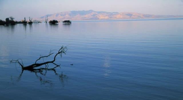 Geographie Wissensfrage: Was ist der größte See Afrikas?