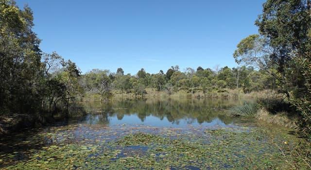 """Natur Wissensfrage: Was ist ein """"Billabong"""" in Australien?"""