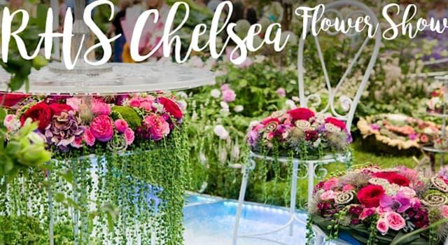 Geschichte Wissensfrage: Welche Gartenelemente wurden bis 2013 von der Chelsea Flower Show verbannt?