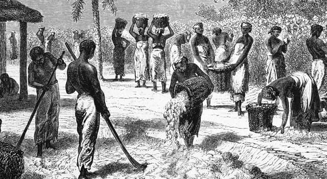 Film & Fernsehen Wissensfrage: Welcher dieser Filme handelt von einem Geiger, der entführt und in die Sklaverei gezwungen wird?
