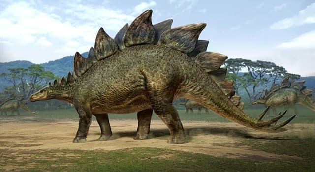 Natur Wissensfrage: Welcher Dinosaurier ist auf dem Bild dargestellt?