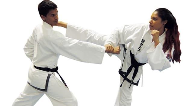Sport Wissensfrage: Welcher ist der höchste Gürtel, den man im Taekwondo in den oberen Rängen bekommen kann?