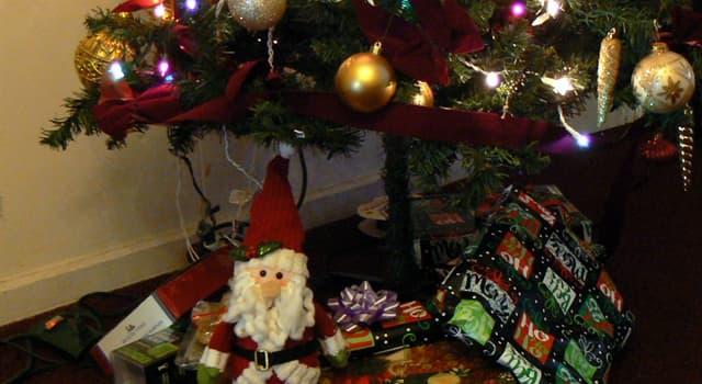 Kultur Wissensfrage: Welches Land hat die Tradition, zu Weihnachten Besen zu verstecken?