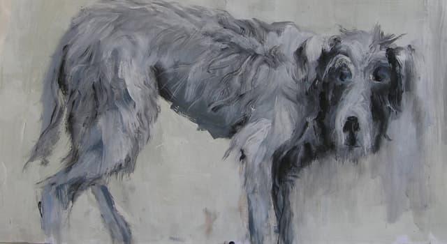 Kultur Wissensfrage: Wer war der Jagdhund des Odysseus in der griechischen Mythologie?
