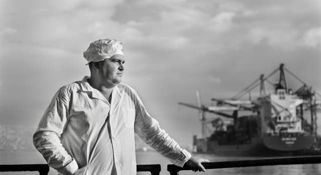 Society Trivia Question: What is a cook called on a merchant ship?