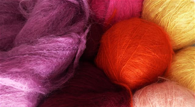 Culture Trivia Question: Which animal hair is used to make the 'mohair' fabric or yarn?