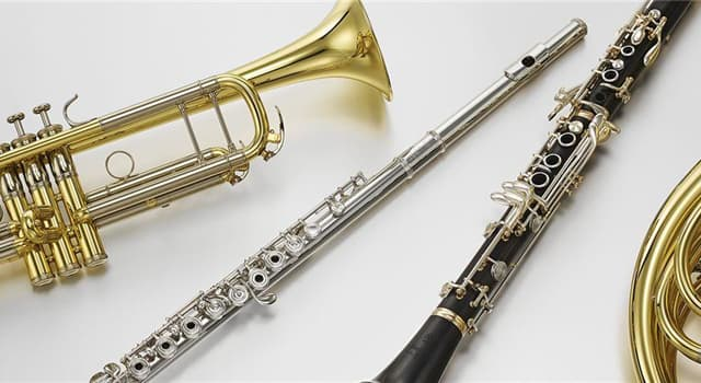 Culture Trivia Question: Which of the following is a brass musical instrument?