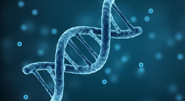 Science Trivia Question: Which of these is a genetic disorder?