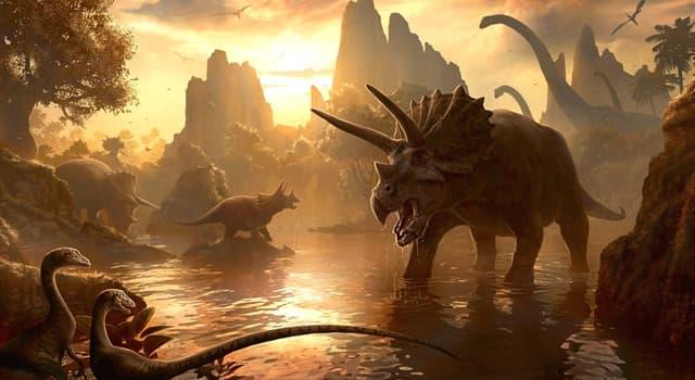 Wissenschaft Wissensfrage: Wie haben sich Dinosaurier vermehrt?