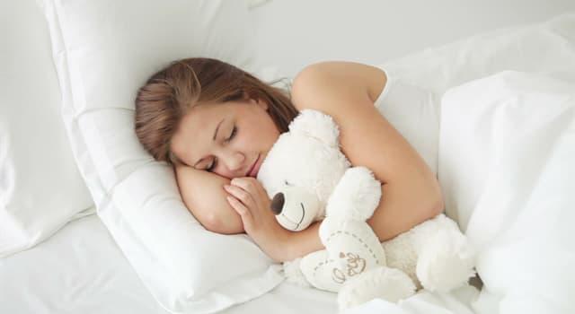 Wissenschaft Wissensfrage: Wie heißt eine Schlafstörung, bei der eine Person während des Schlafes eine Atempause einlegt?