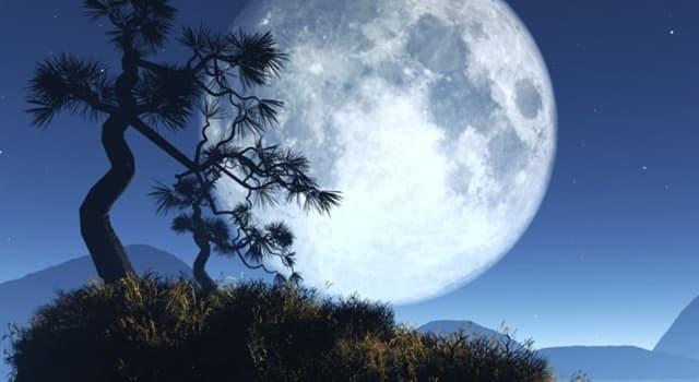 Wissenschaft Wissensfrage: Wie weit ist der Mond von der Erde entfernt?