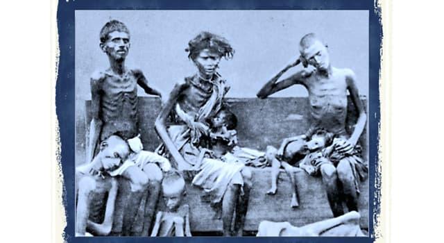 Geschichte Wissensfrage: Wo verursachte Joseph Stalin eine massive Hungersnot, den so genannten Holodomor-Genozid?