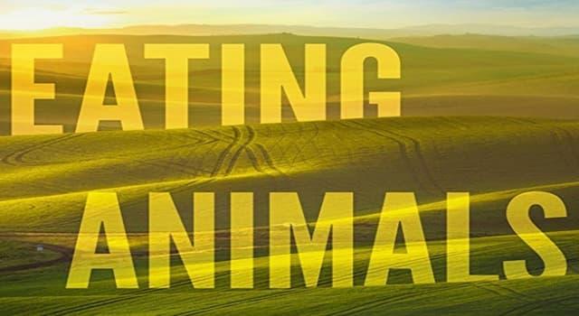 Natur Wissensfrage: Wovon ernähren sich die Aasfresser?
