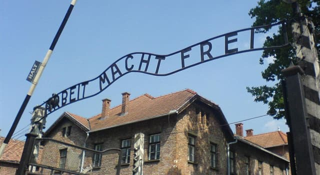 History Trivia Question: Approximately how many Jews were killed by Nazi Germany during the Holocaust?