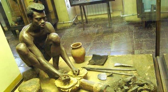 Культура Запитання-цікавинка: Де знаходиться музей антропології та етнографії?